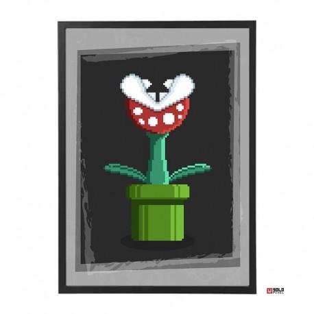 Lámina: Plant